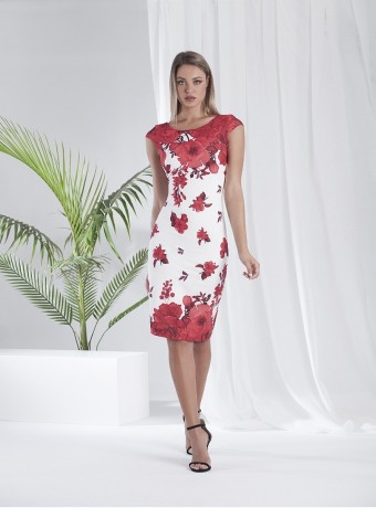 Red floral print short dress with white background